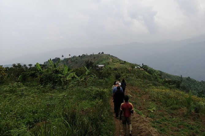 Rwenzori Mountains village walk