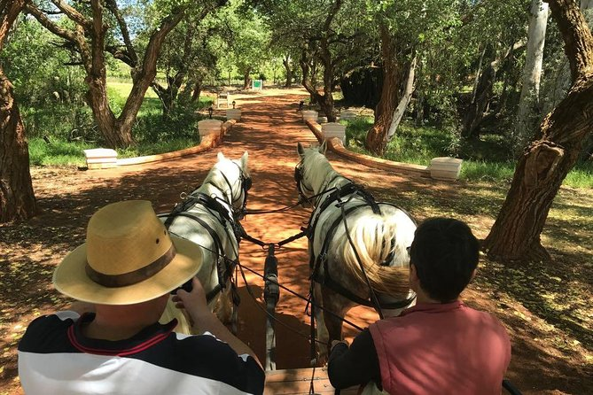 20 Minute Carriage Trail departing at 12h00 every day