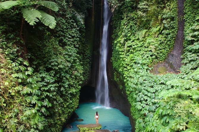 Best of North Bali Tour: Leke-Leke Waterfall, Handara Iconic gate and Temples