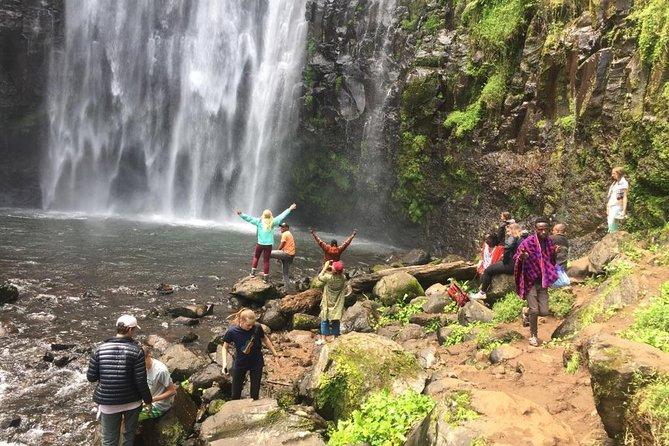 Kinukamori or Materuni Waterfall & Coffee Tour