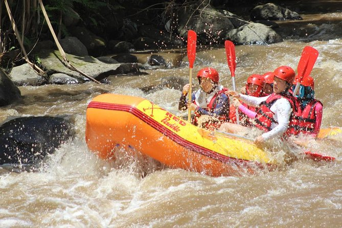 Bali Downhill Cycling and White Water Rafting photo 8