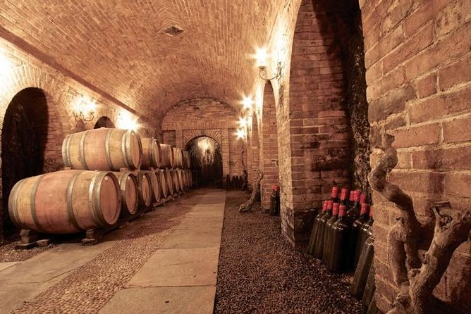 Cascina Chicco wine tasting experience