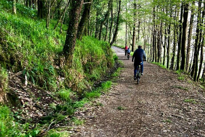 Guided or self guided Electric Bike Tour of the highlights of the Ring of Beara photo 10