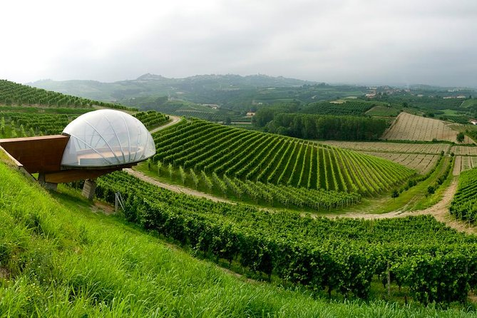 The wines of Le Langhe Region at Ceretto Winery