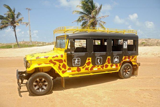 Pipa Jeep Tour com Arvorismo