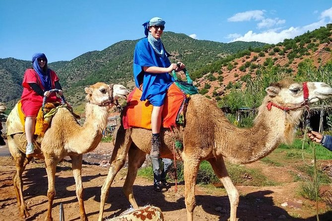 Atlas Mountains Day Trip From Marrakech and camel Ride including Lunch
