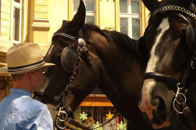 Horse and carriage tours with Polish traditional food experience