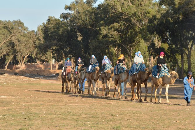 Agadir Camel riding and barbecue dinner with Hotel Transfers