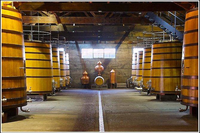 Ultimate Wine Tour en Napier: .... 5 - 6.5 horas