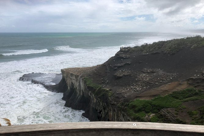 Muriwai Beach / Kumeu Wine Tour