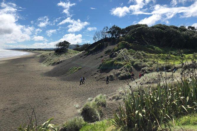 Muriwai Beach / Kumeu Wine Tour