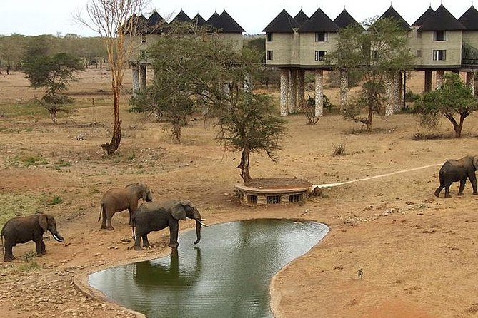 3 Days 2 Nights Tsavo East Taita Hills Game Sanctuary on Stilts photo 1