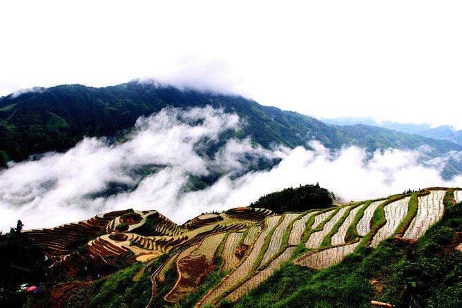 Group Day Tour to Explore Longji Rice Terraces