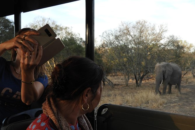 Kruger Park Tour Community Service Package at Bush Camp (6 day)