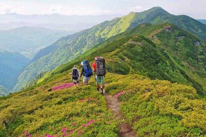 Valley of Flowers Trek, Uttarakhand - Colors of Bliss