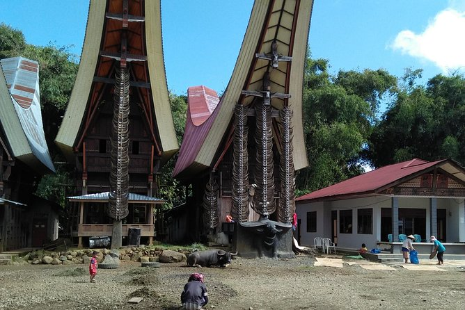Explore Sulawesi 12 days ,295 USD/per person