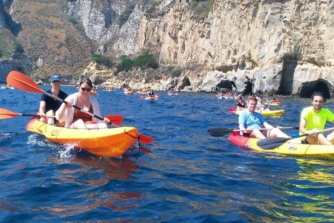Wild Naples Kayak Tour