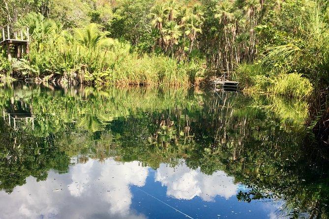 Cenote, jungle, bike & lunch