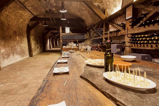 Wine tasting private day tour in Kakheti wine cellars from Tbilisi