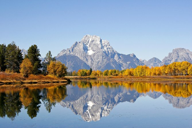 Private Grand Teton Wildlife Safari Tour