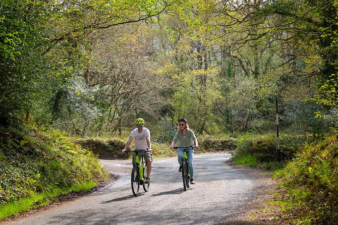 Guided or self guided Electric Bike Tour of the highlights of the Ring of Beara photo 6