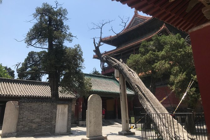 Private Qufu Day Tour from Beijing by Bullet Train: Confucius Temple, Family Mansion and Cemetery photo 4