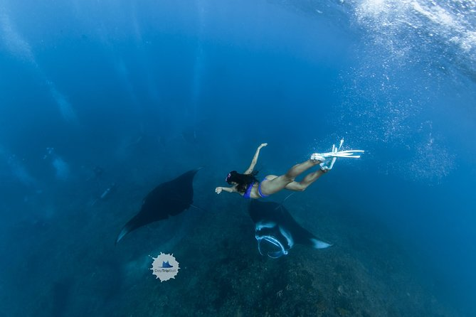 Unique Full-Day Trip to Nusa Penida by Boat