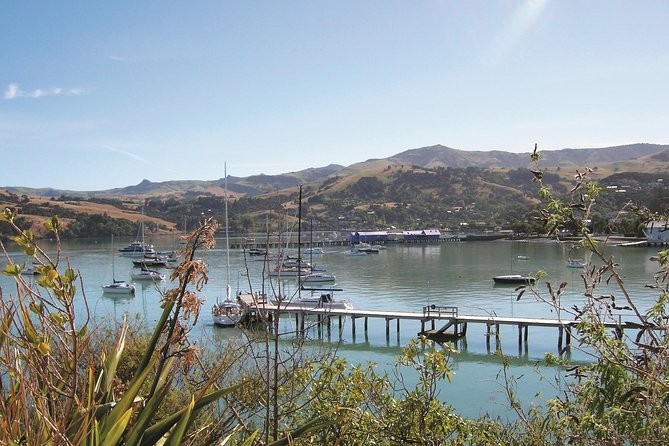 Akaroa Shore Excursion: Banks Peninsula, Christchurch City Tour and Jet Boat on Waimak River