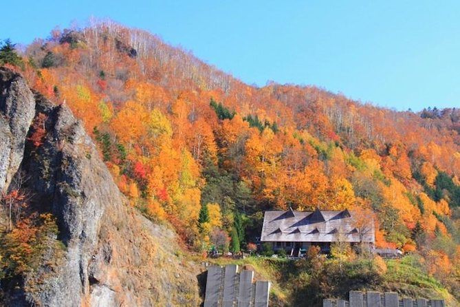 Autumn Hoheikyo, Red Leaves Gondola and Exploring Otaru Tour