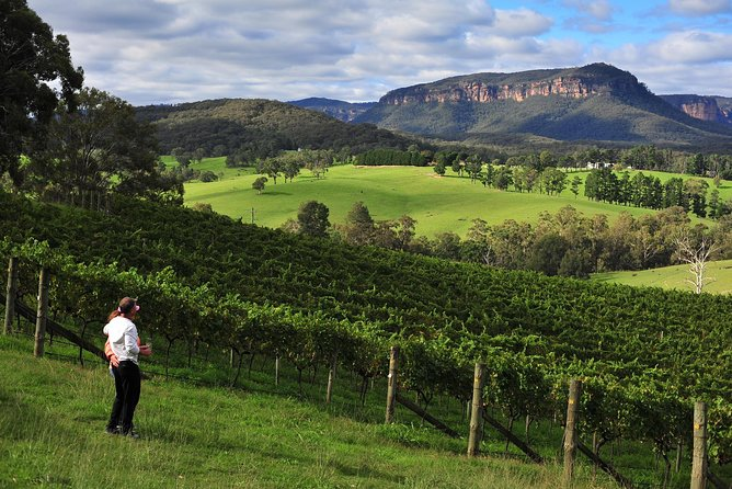 Private Blue Mountains and Winery Day-Trip from Sydney photo 5