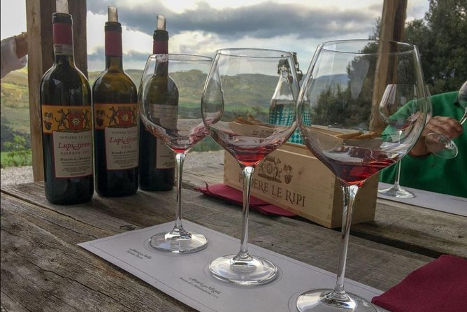Day trip in Chianti and Montalcino with local Gastronome