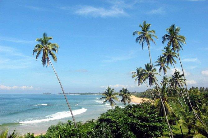 Private Day Trip to Bentota From Negombo. ( www.sigiritrip.com)