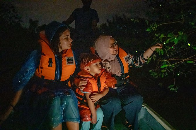 Private Fireflies Tour: Kuala Selangor Day Trip including riverside dinner