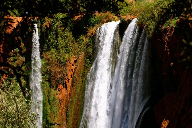 Ouzoud Waterfalls Private Day Trip from Marrakech photo 11