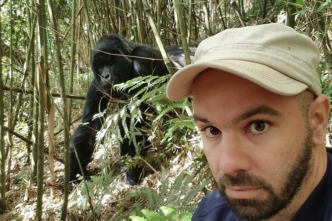 Rwanda Gorilla Trekking Experience