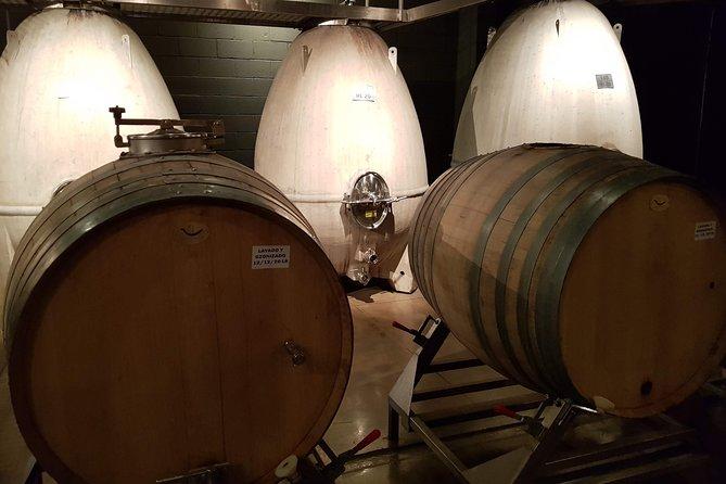 Recorrido vinícola con paradas libres en Mendoza, Mendoza, ARGENTINA