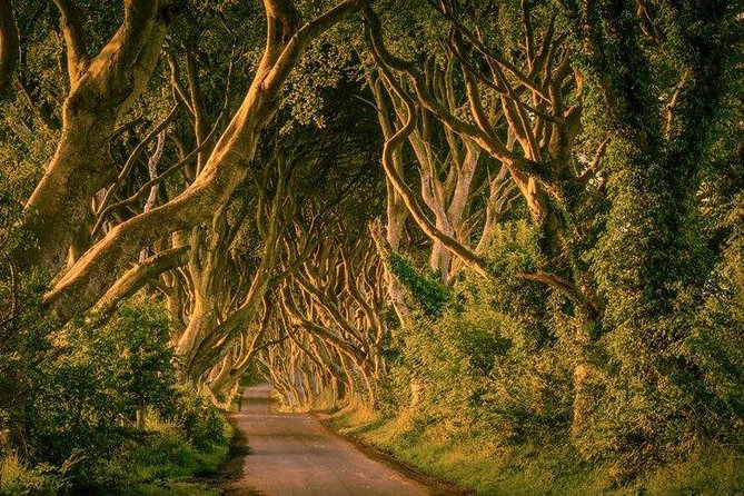 Game of Thrones Tour From Dublin
