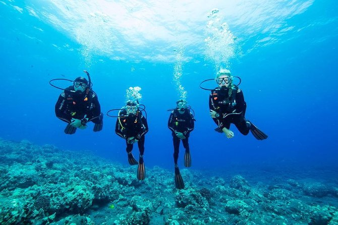 Discover Scuba Diving in San Bartolo