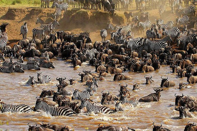 5 Days Migration Safaris