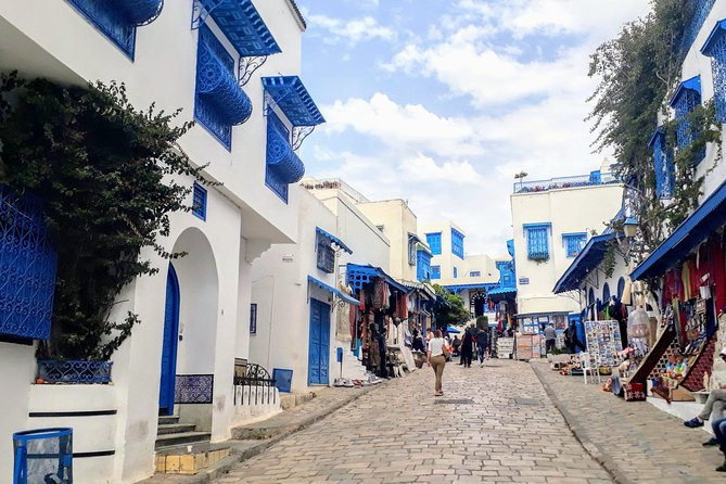 Picturesque Village Of Sidi Bou Said + Tunis Old Medina photo 9