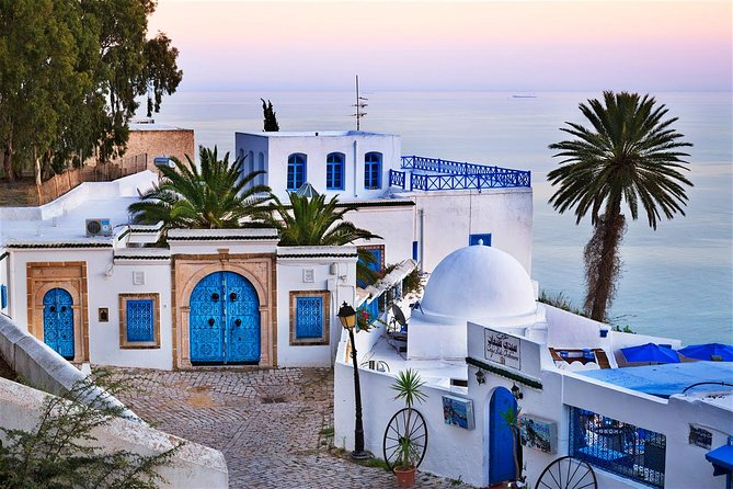Archaelogical Site Of Carthage + Picturesque Village Of Sidi Bou Said photo 13