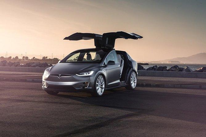 Private driver Tesla Transport Lyon transfer / Airport LYS Colombier-Saugnieu