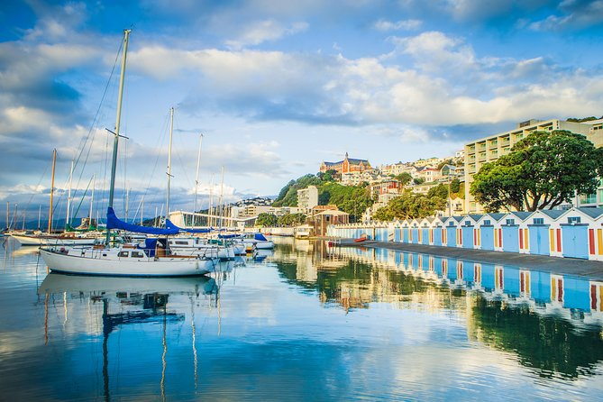 Wellington City Sights and Coastline Guided Tour