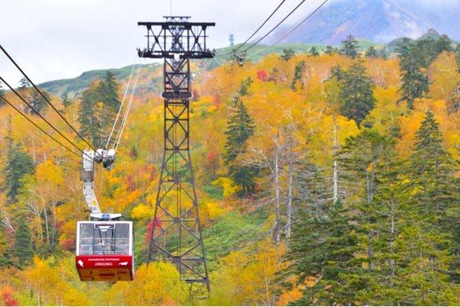 Hokkaido's Mt. Kurodake Stroller and Sounkyo Gorge Spa Tour in Autumn!