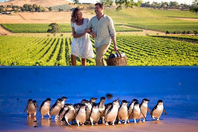 Mornington Peninsula and Phillip Island 'Wineries & Wildlife' Tour