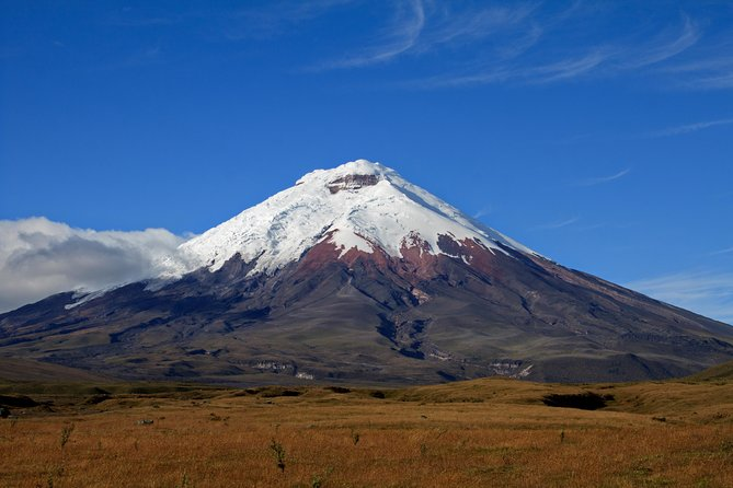 Cotopaxi National Park Full Day Private Tour