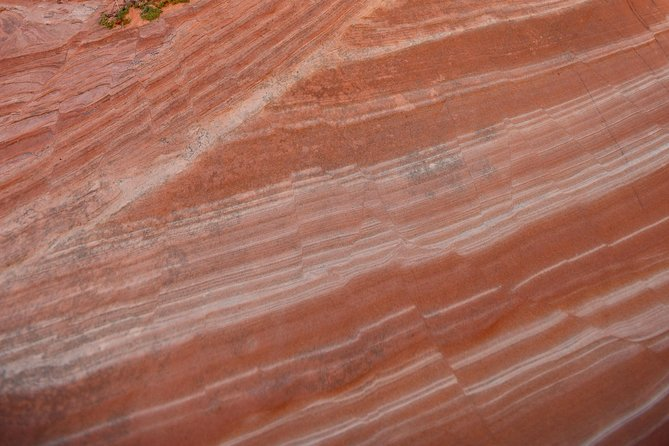 Hiking Kanab Visit and Photograph the famous White Pockets in Vermilion Cliffs photo 59