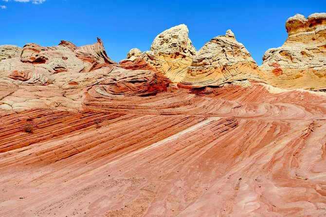 Hiking Kanab Visit and Photograph the famous White Pockets in Vermilion Cliffs photo 40