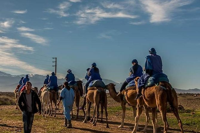 Atlas Mountains Day Trip with Camel Ride photo 15