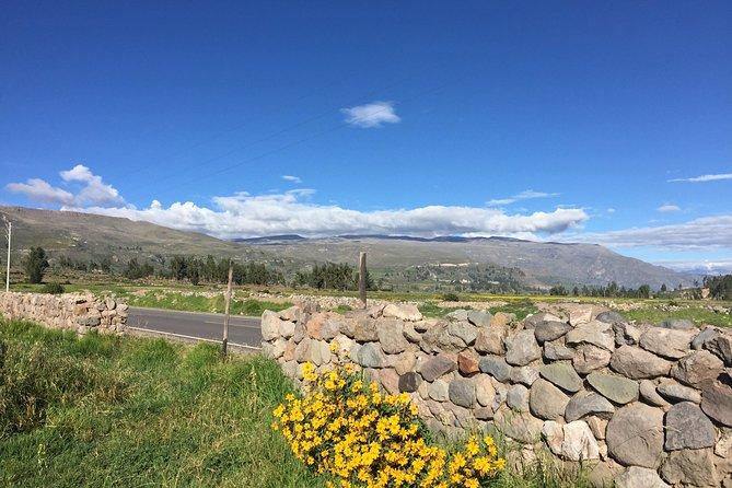 2 day trek including transfer to Puno / Colca Canyon